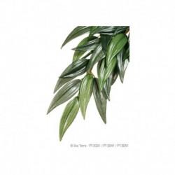100W Day-Glo Lampe P/Lezarder-V