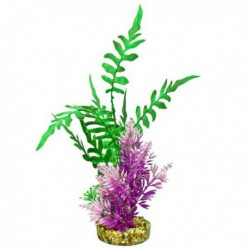Anacharis, Plante Marina,Mini,Pour Aq.-V
